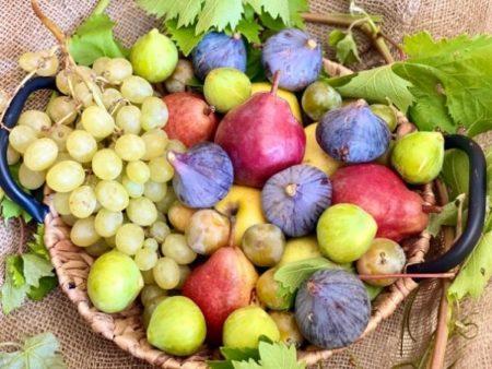 fruits frais bio locaux provence
