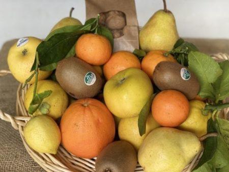 panier fruits frais bio locaux