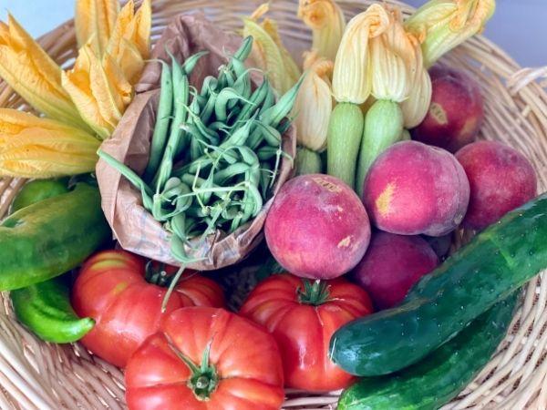 fruits et légumes bio locaux