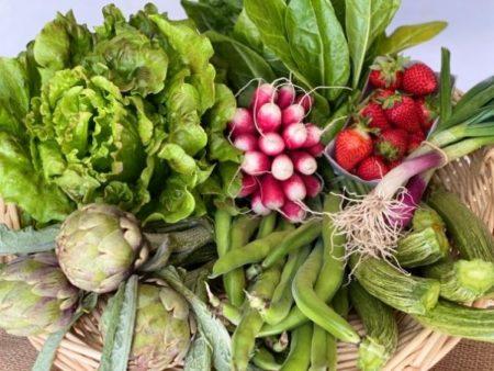 panier fruits et légumes bio locaux