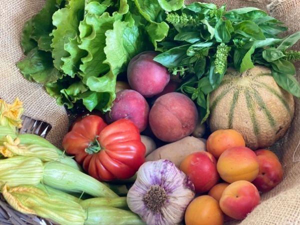 fruits et légumes bio locaux de saison