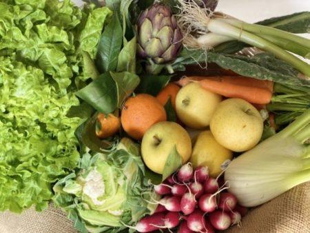 fruits légumes extra-frais bio locaux