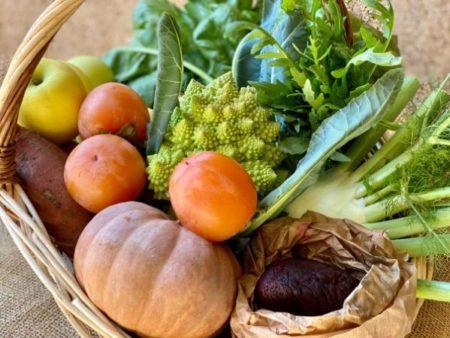 fruits légumes bio locaux