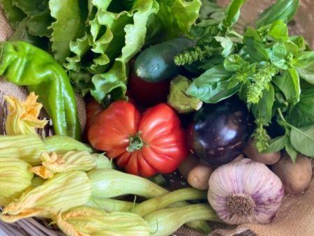 légumes bio locaux de saison