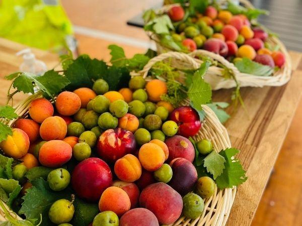 corbeille de fruits en entreprise