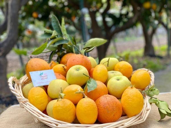 corbeille fruits frais saison hiver